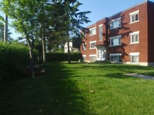 Renovated 1 BDR Apartment in Carlington - $840/month
