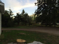 1 Acre Renovated older home just outside of Whitecourt