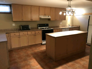 2 bedrooms for rent basement apartment, hamilton mountain.
