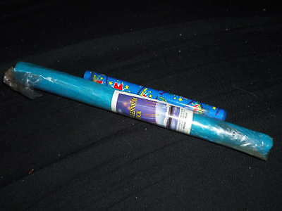 Vintage Souvenir Stick of Rock and Pen from the Millennium Dome