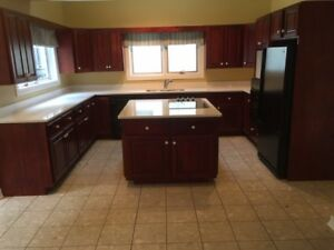 Kitchen Cabinets with Appliances and Quartz Island