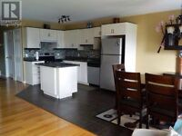 EXECUTIVE APARTMENT - ALL APPLIANCES INCLU
