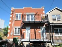 Priced to Sell Duplex in the heart of LaSalle