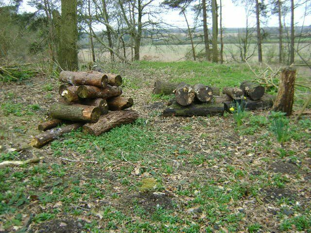 FIRE WOOD FOR SALE SUITABLE FOR LOG BURNERSOPEN FIRESin Coventry, West MidlandsGumtree - FIRE WOOD FOR SALE SUITABLE FOR LOG BURNERS OR OPEN FIRES. THIS WOOD COMES IN METRE LENGHTS OF VARIOUS THICKNESSES AND CONSISTS OF OAK AND SCOTS PINE. COLLECT ONLY . I HAVE VARIOUS AMOUNTA OF THIS WOOD . IT WAS FELLED LAST YEAR AND IS READY FOR...