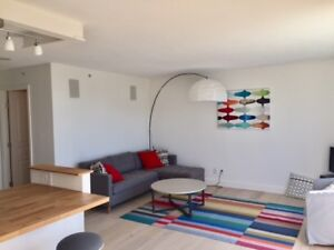 Views Galore: Downtown furnished 3 bedroom, 2 bath - NOV 15th