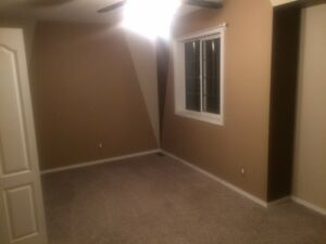 Roommate wanted at south side town house