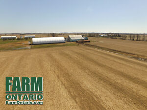 Fantastic Yields! 99 Acres Horse/Cash Crop Farm in Raleigh.