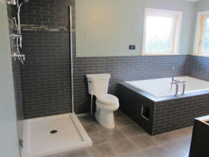 Licensed Plumber - DR Renovation Solutions Stratford Kitchener Area image 5