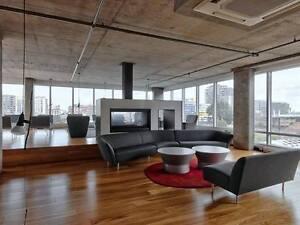 Apartment/ appartement  Studio (1 ½) for rent/ à louer Downtown