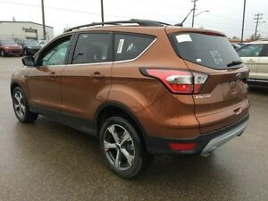 2017 Ford Escape SE Edmonton Edmonton Area image 5