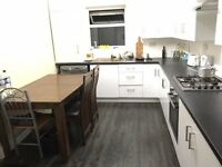 Spacious and Cheap Double close to Stratford! Friendly House Atmosphere :)