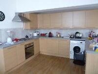 ONE ROOM AVAILABLE IN RECENTLY RENOVATED 6 BEDROOM HOUSE IN THE HIGH DEMAND LOCATION OF HEATH