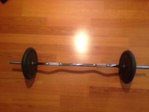 80lbs Standard 1 inch Weights + Standard EZ Curl OR Straight Bar