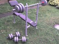 119 lb 54 kg Big Grey Dumbbell & Barbell Weights and Bench - Heathrow