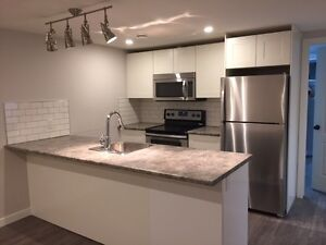 Completely newly renovated legal basement suite in Wellington!