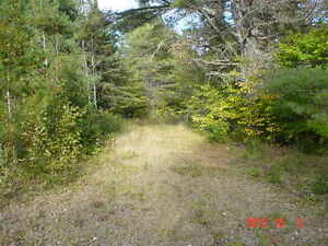 looking for privacy ?Perfect to put your trailer / cabin on Gatineau Ottawa / Gatineau Area image 1