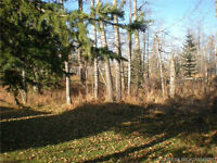 Sundre Residential 1/3 Acre Lot