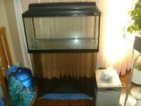 Beautiful Fish Tank with matching glass Stand, Accessories