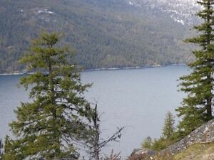 Rare Slocan Lakeview Land! (DL 6530 Hwy 6, Slocan)