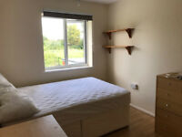 Room to rent in student house in Colchester close to university of Essex