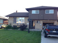 Awesome TWO Bedroom In West Hamilton Mountain