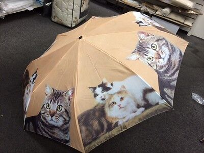 Cats Cat Kitten Lover Compact Folding Pocket Purse Umbrella & Tote Bag