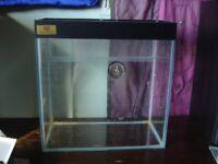 Custom Aquaria Glass Tank Vivarium for Reptile Spider