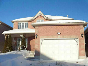 LARGE BRIGHT & SPACIOUS ALL INCLUSIVE BSMT BY GEORGIAN MALL