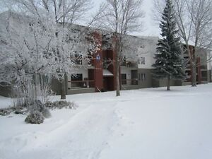 2 bedroom apartment, Lots of Storage,