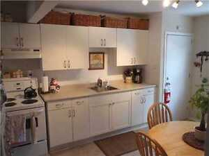 Two Bedroom Apartment Walking Distance to Waterfront/Downtown