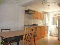 SPACIOUS 2 BEDROOM FLAT MINUTES FROM STOKE NEWINGTON CHURCH ST. - (PRIVATE GARDEN)