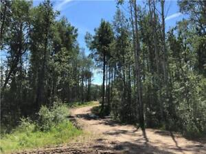 EXTREMELY RARE FULLY SERVICED LAND !