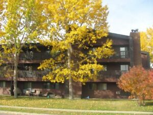 3 Bed, 1 Bath  Condo with Fireplace - AB Side