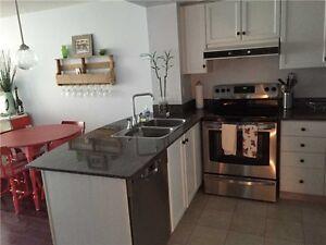 Furnished Downtown Rental  - 1 yr lease Available Oct 1