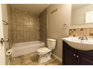 Fully renovated basement suite - pet friendly!