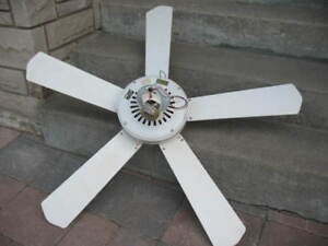 Ceiling and Floor Fan
