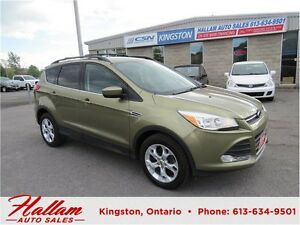 2014 Ford Escape SE, Back up Camera, Bluetooth, Heated Seats