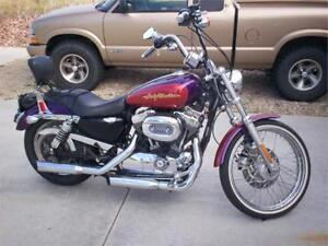 2006 Harley-Davidson Sportster 1200 Custom Screamin'Eagle Pipes!