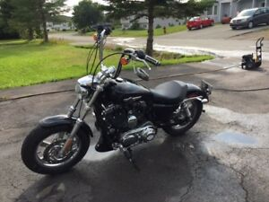 2012 XL1200C Sportster for Sale!