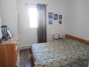 maison rénovée avec garage Lac-Saint-Jean Saguenay-Lac-Saint-Jean image 7