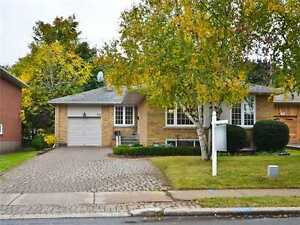 Nice house for rent Bayview/steeles