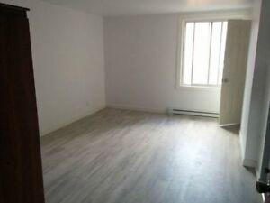 Appartement 1 1/2 Rénové!