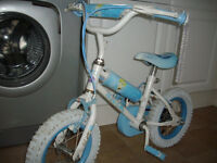 Daisey Princes bike