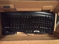 Ergonomic keyboard and wireless mouse