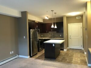 Newer Single Bedroom SW Condo for rent