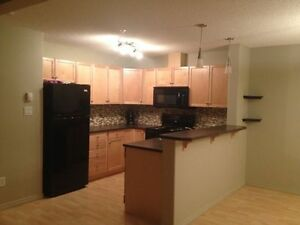 2bed/2bath apartment immediately available for rent Edmonton Edmonton Area image 3