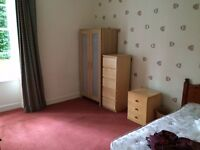 Double Room available in shared student flat.