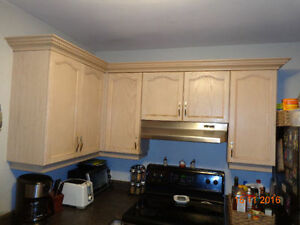 Kitchen Cupboards and Counter if wanted