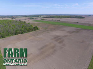 Top Quality Systematically Tiled Vacant Land in Dutton!