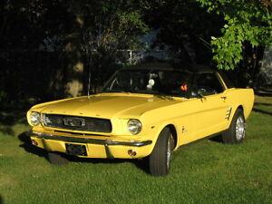 Mustang1966 coupé